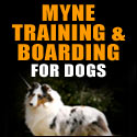 MYNE Training & Boarding