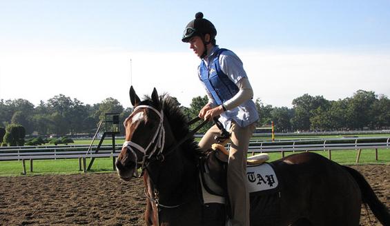 jockey warming up horse