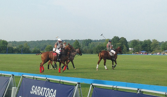 people playing polo