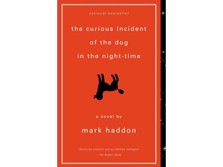 Curious.Dog.Haddon460.jpg