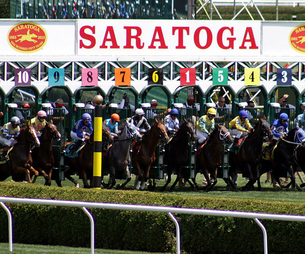 horses leaving the starting gate at saratoga