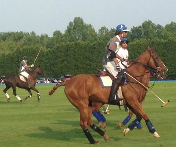 polo players in saratoga