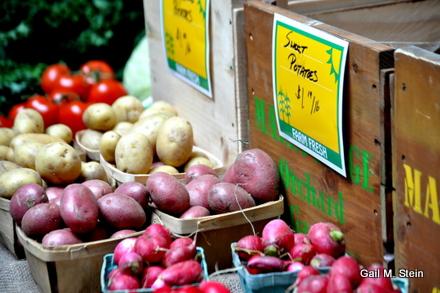 farm (5).jpg