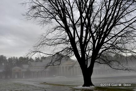 fog (5).jpg