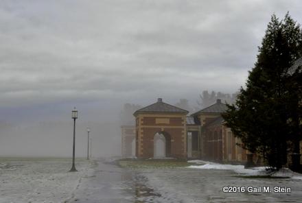 fog (8).jpg