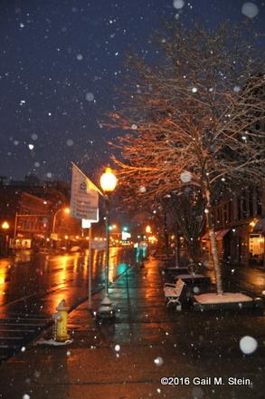 snow (13).jpg