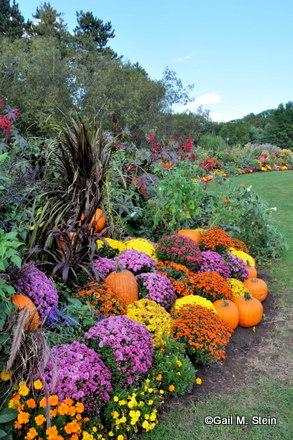 autumn01-001.jpg