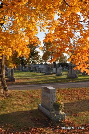 autumn06-001.jpg