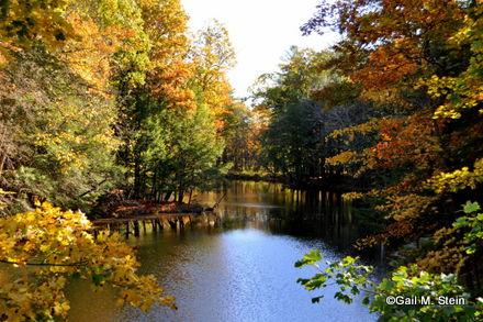autumn09-001.jpg