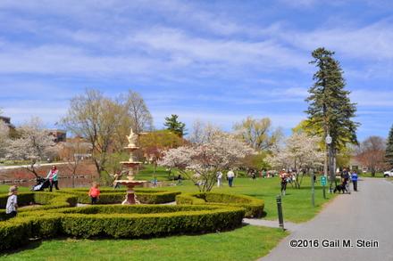 spring20281229.jpg