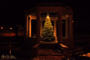 The Christmas Tree in the War Memorial.