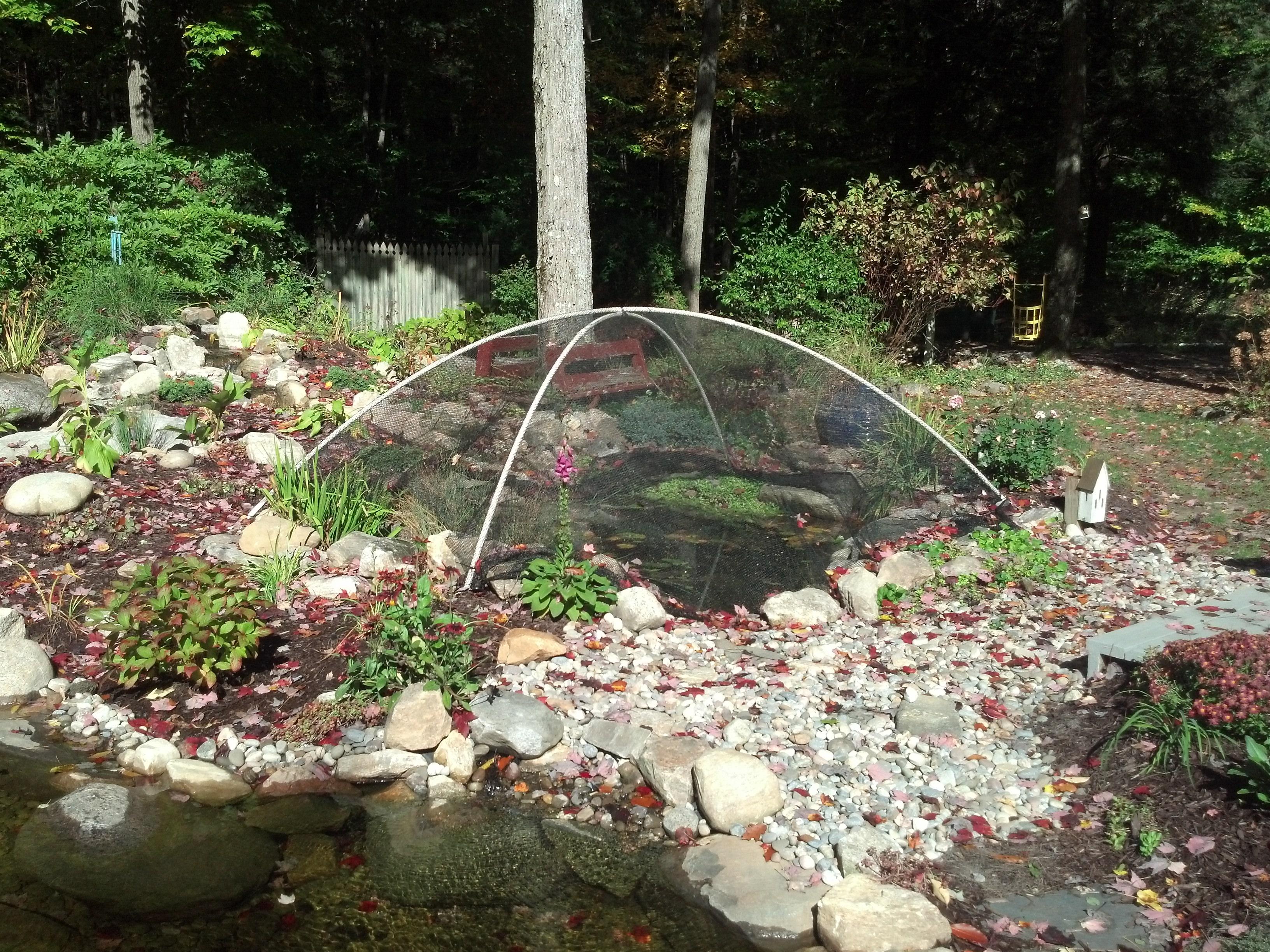 pond tent.jpg