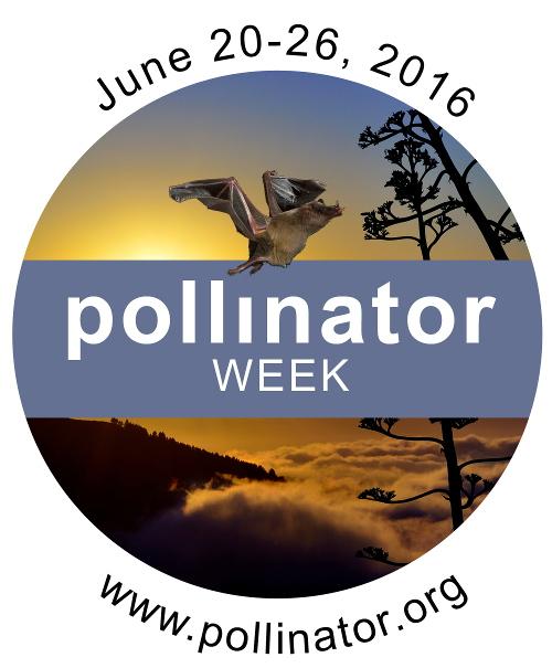 pollinator week image 2016.jpg