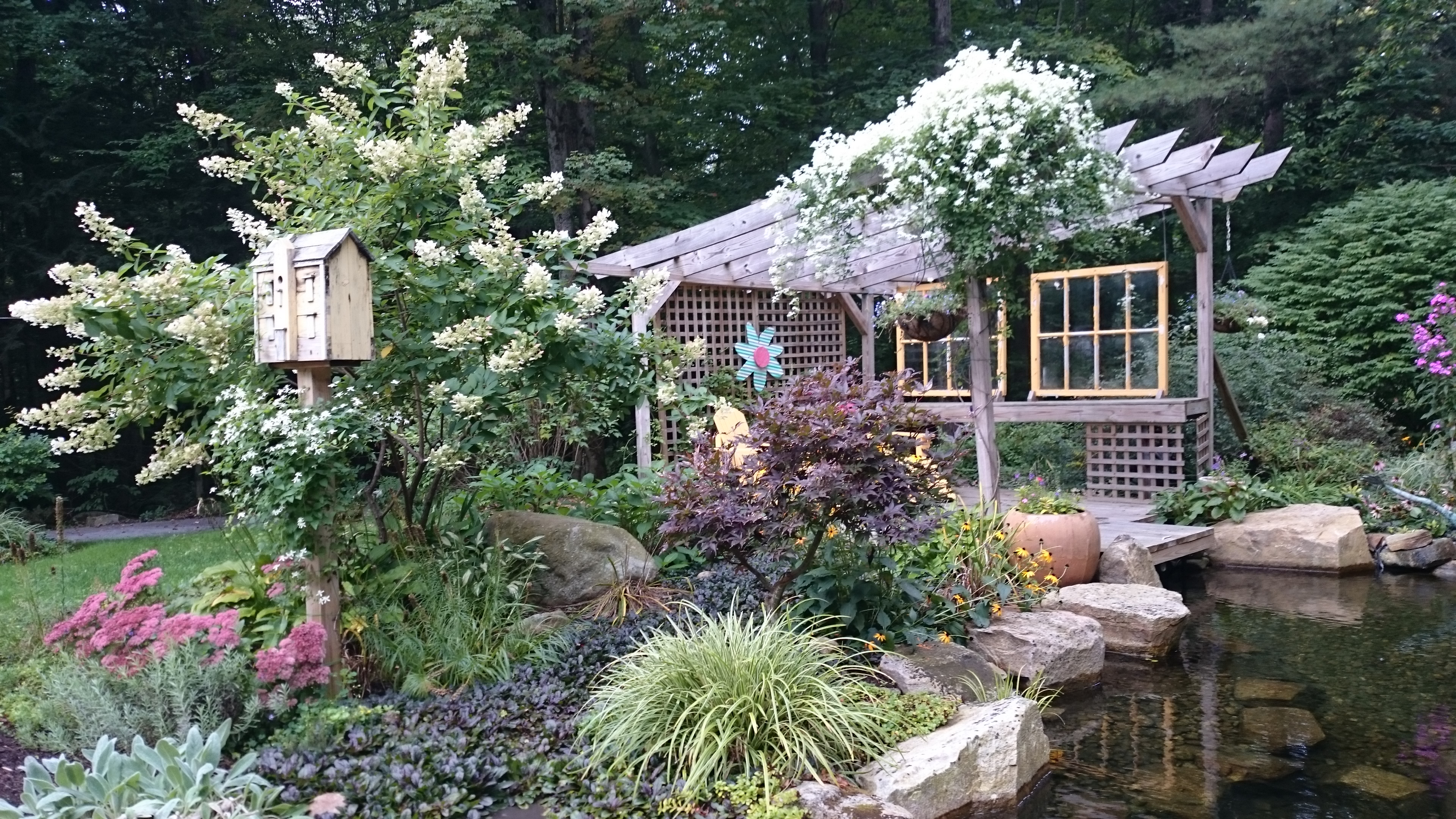 late season garden.jpg