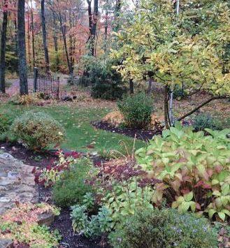 fall20garden20clean20up-thumb-330x586-27533.jpg