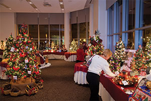 festival of trees preview