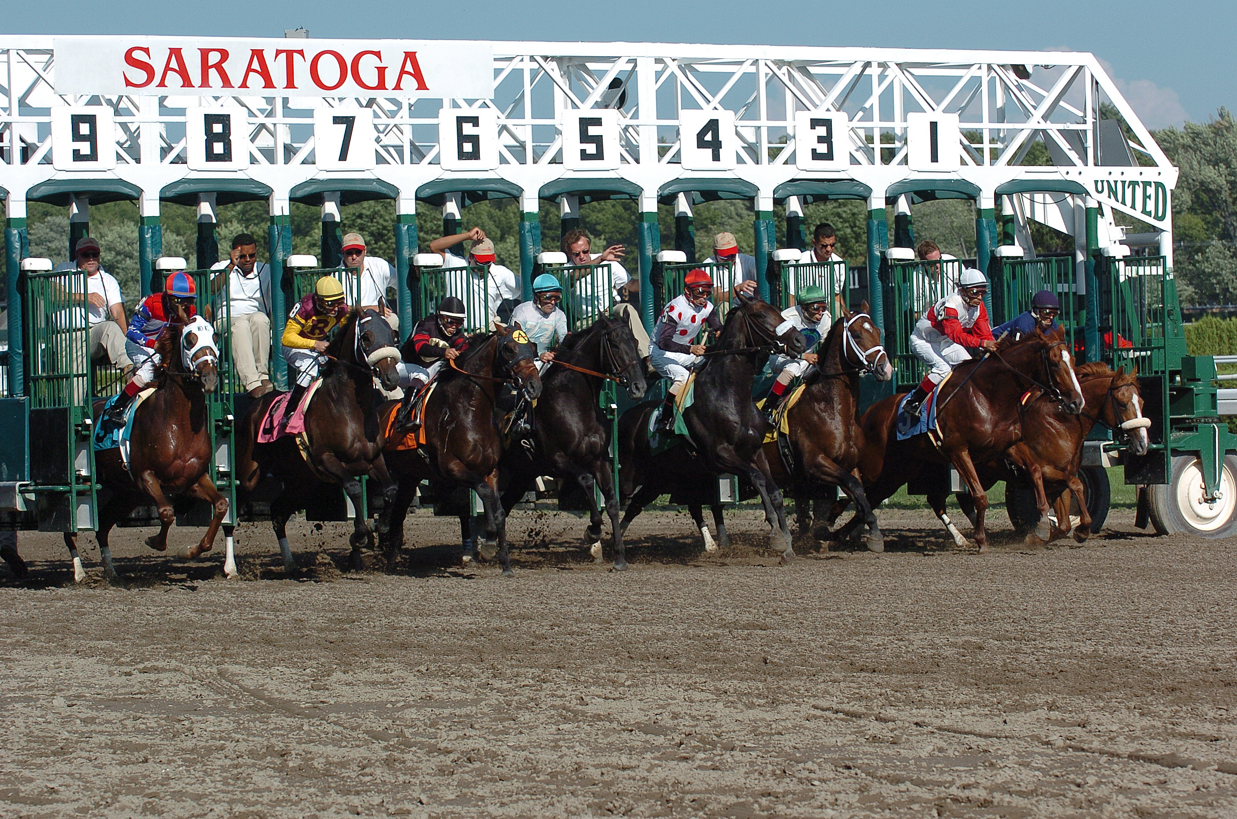 Saratoga Starting Gate Credit Adam Coglianese 1.jpg
