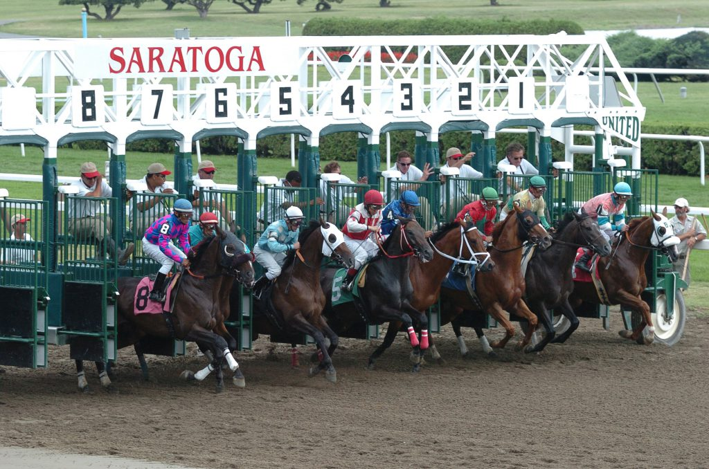 Saratoga Starting Gate Credit Adam Coglianese 2.jpg