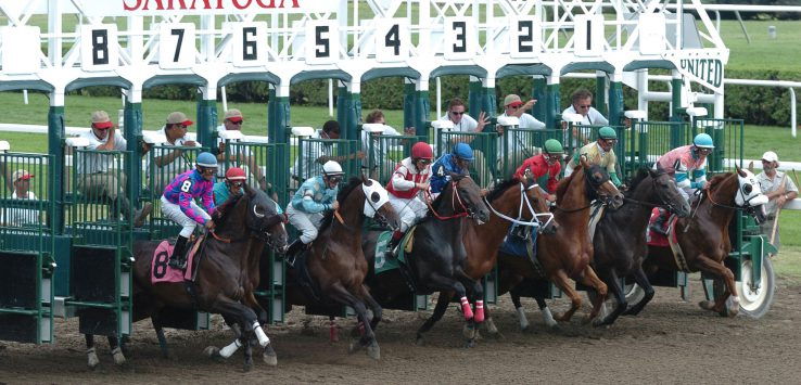 Saratoga Starting Gate Credit Adam Coglianese 2.jpg