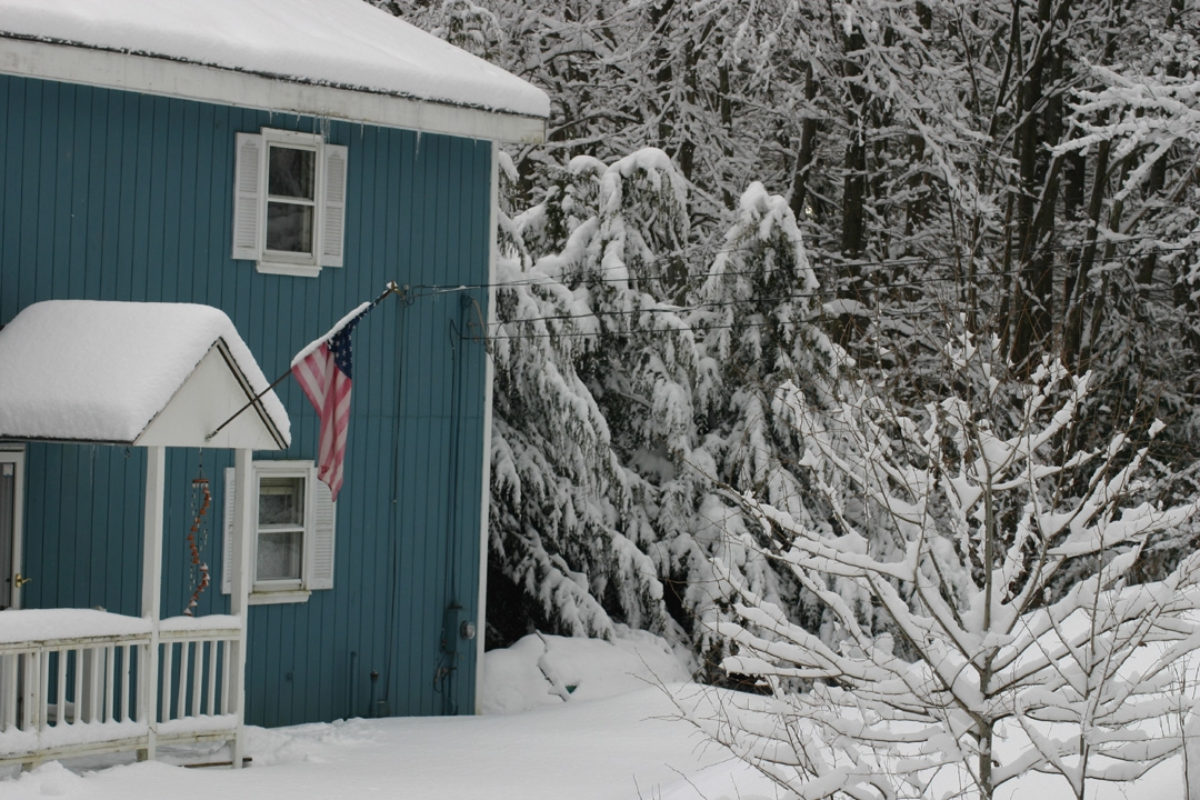 Lee Millett Green House with Snow.JPG