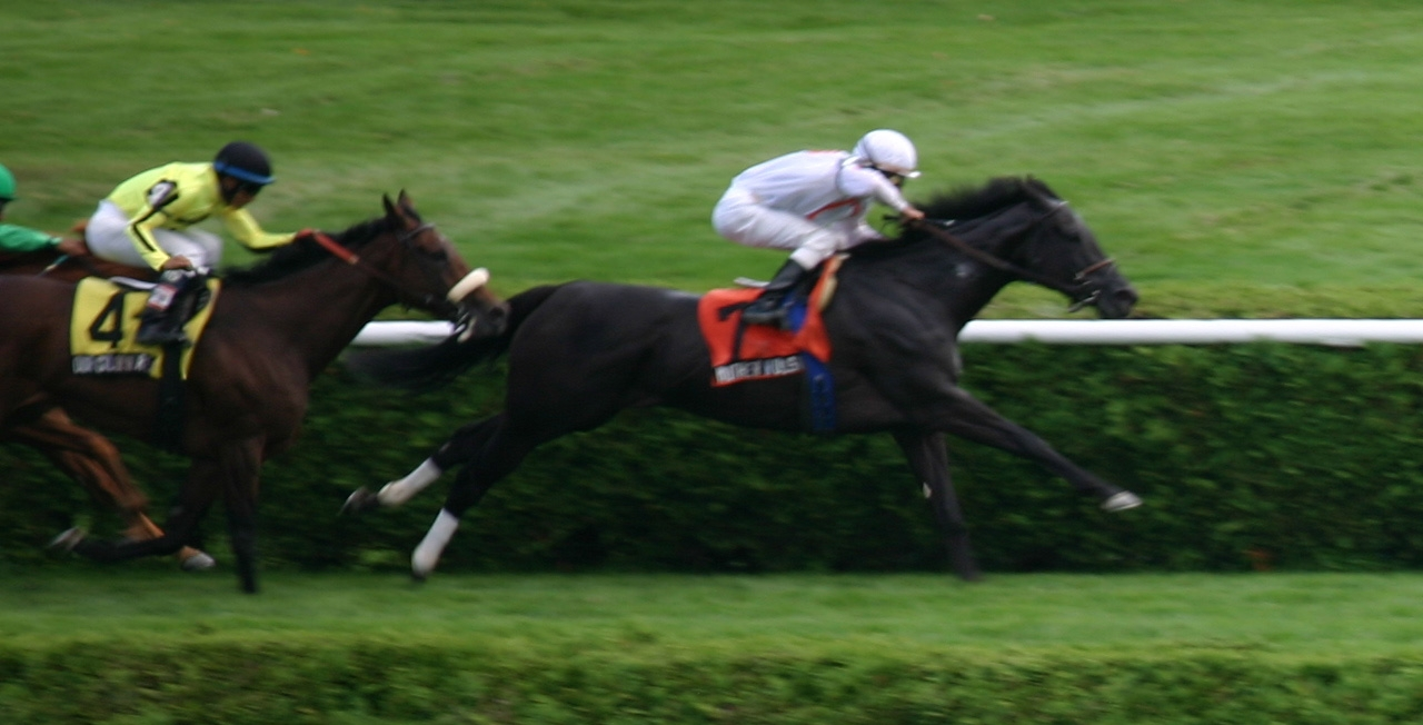 Mother Russia Winning at Saratoga Lee Millett.JPG