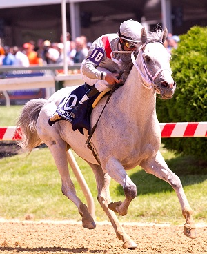 TM Fred Texas Wins on Preakness Day 2012.jpg