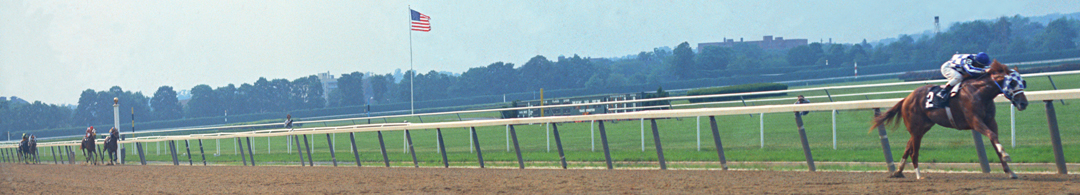 Secretariat 31 Lengths.jpg