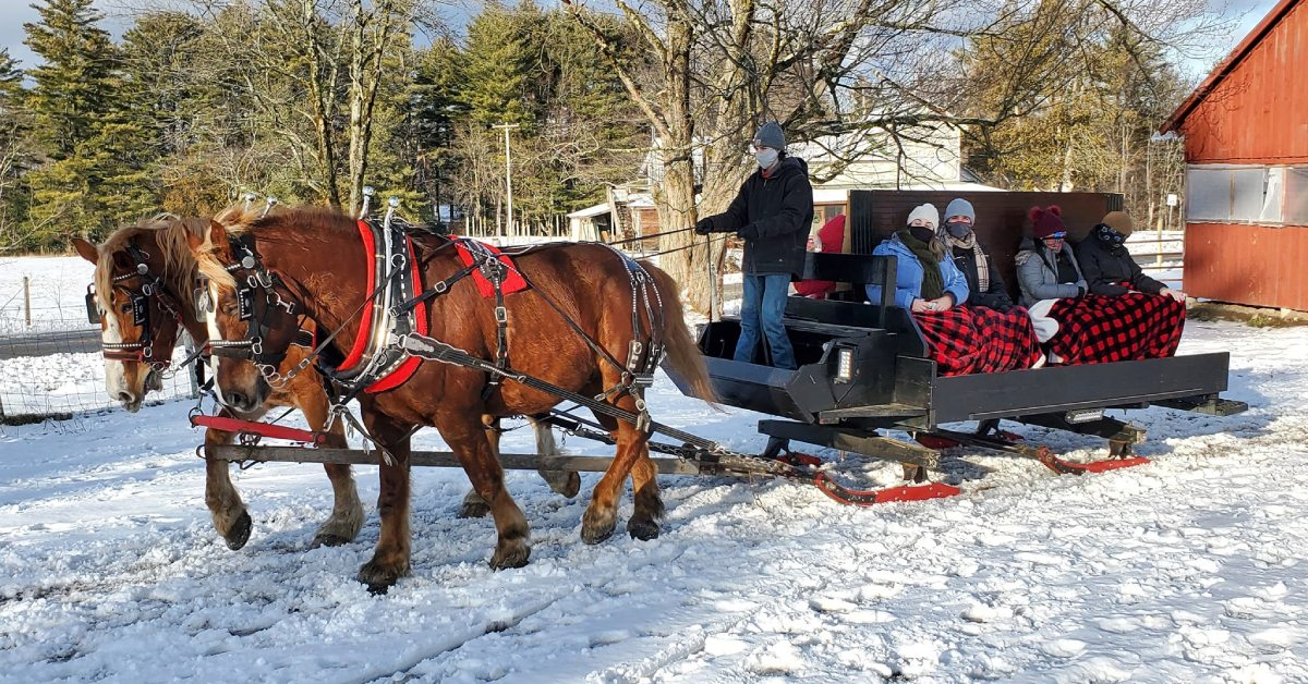 group of people on a horse drawn sleigh ride