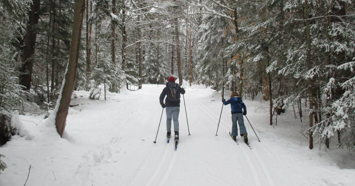an adult and a kid cross country skiing