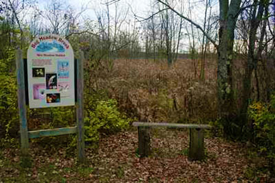 signage on the bog meadow trail