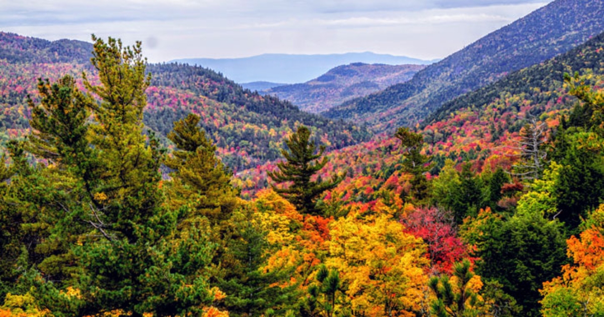 view of fall foliage and mountains from summit