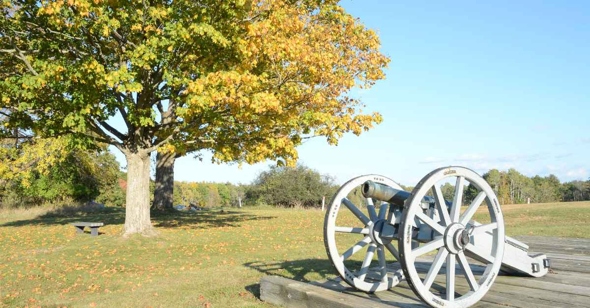 a cannon on display in a field near some trees with fall foliage