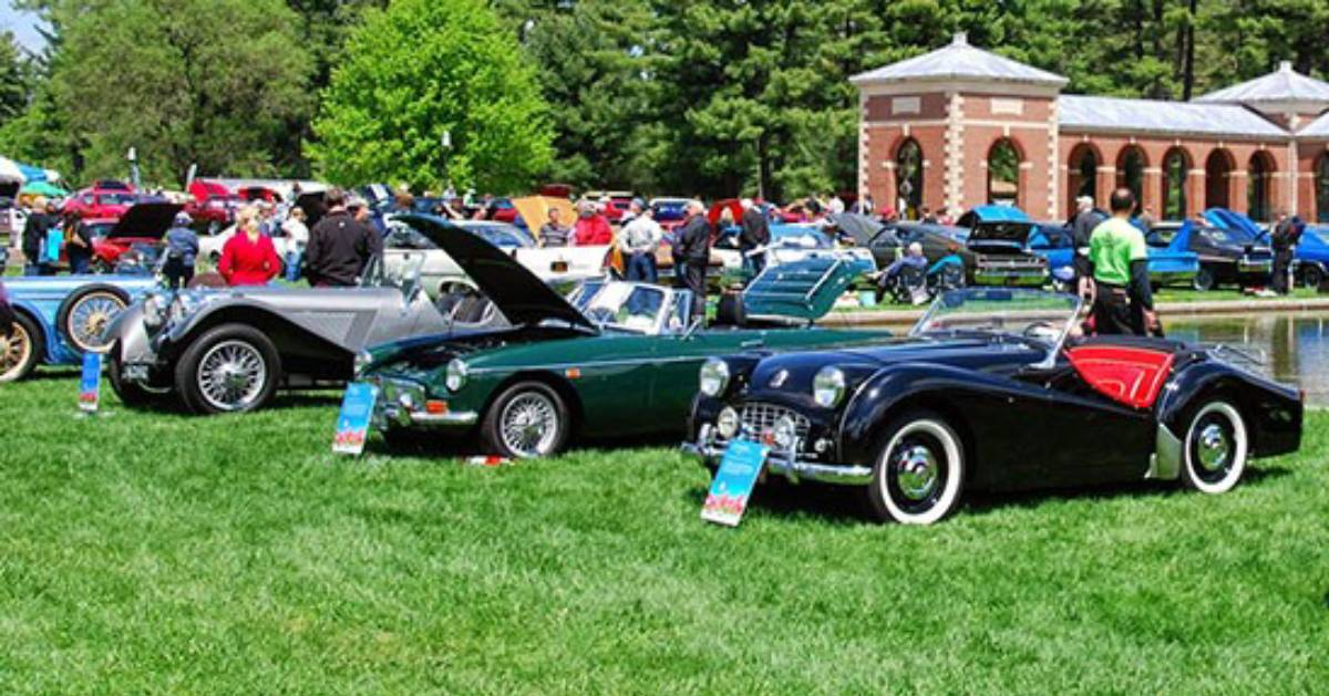 classic cars at a show on a lawn