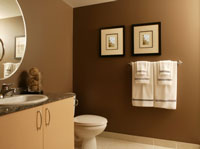 bathroom brown tones