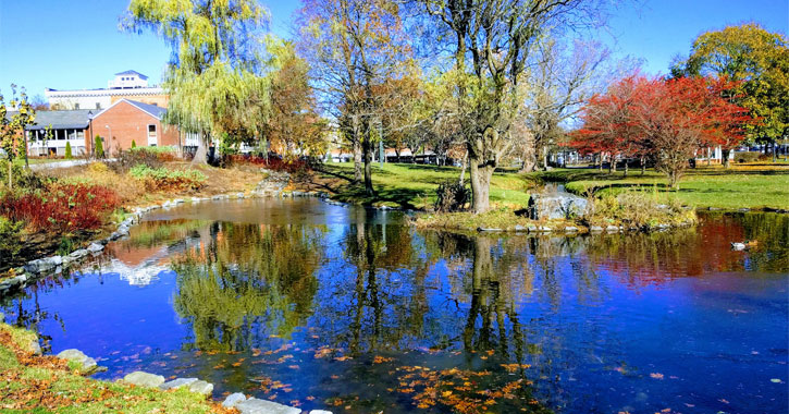 view of pond and trees with striking colors in Congress Park