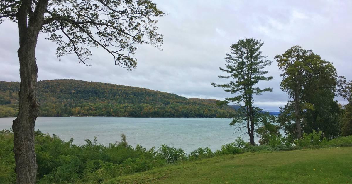 fall colors on trees near a lake