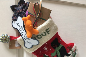 stocking for dog