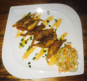 plated chicken wings drizzled with sauce and coleslaw to the side