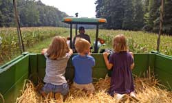 Children Going on a Hayride