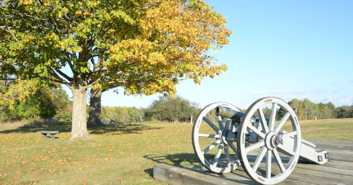 fall foliage on trees near a cannon