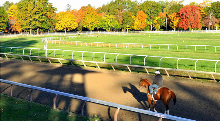 a jockey rides a horse along the track, fall foliage is in the background