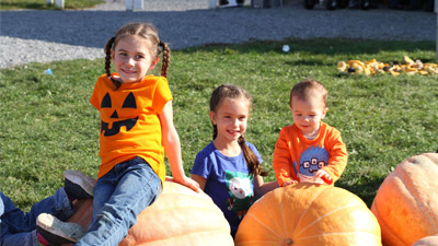 three kids sitting on pumpkins at ellms family farm