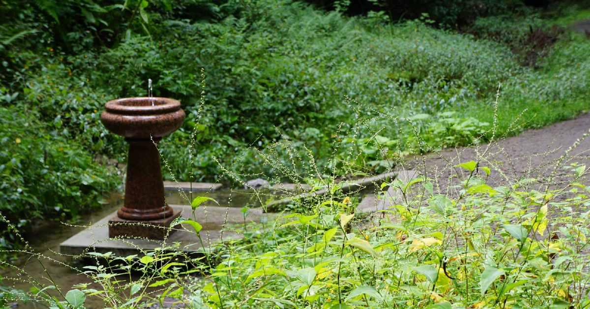 ferndell spring in saratoga spa state park