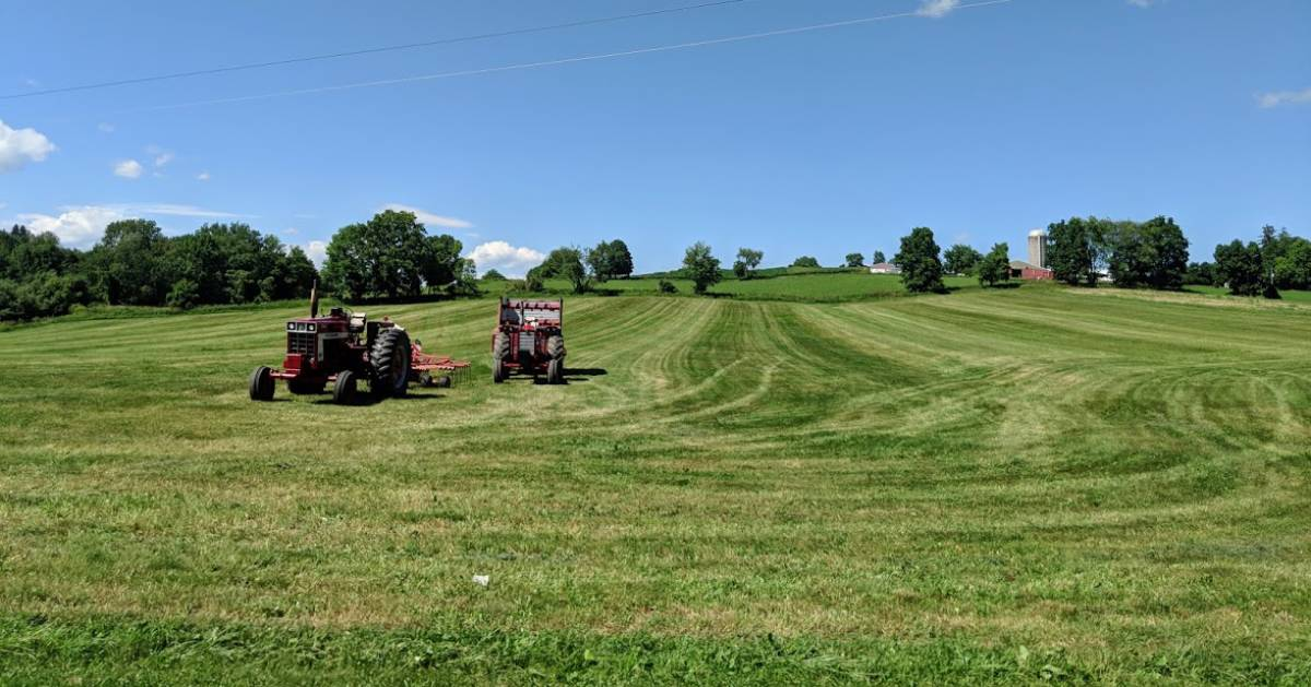 tractor in a field on a beautiful day