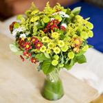 Pot Chrysanthemums