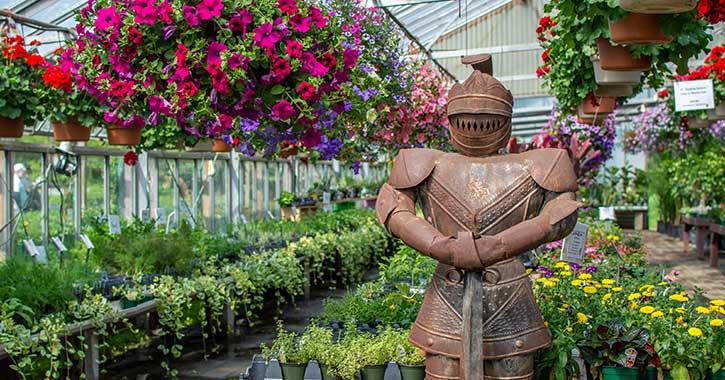 statue near flowers in greenhouse