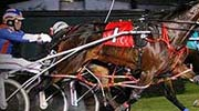 Harness Racing At RACINO