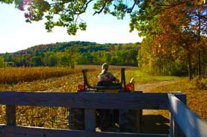 Fall Hayride On Farm