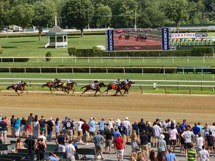 horses racing on the track