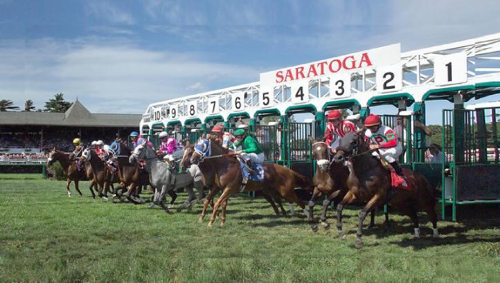 horses leaving the starting gate